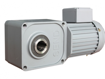 SZG30-R